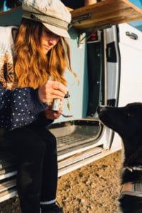 CBD Öl für den Hund Autofahrt